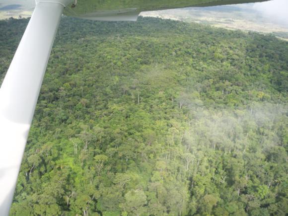 Sobrevolando la selva.