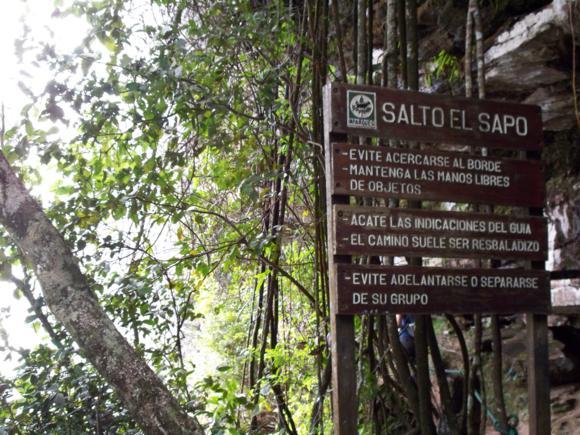 La entrada a Salto el Sapo, el ruido deja entrever que hay algo importante detrás de esos árboles.