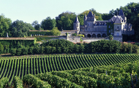 Viñedos de la Gironde donde se produce el vino Burdeos.