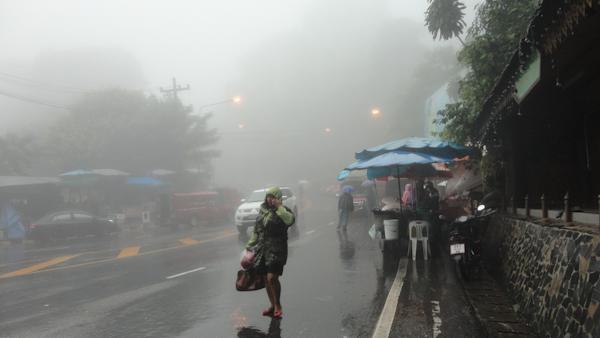 Niebla espesa y lluvia.