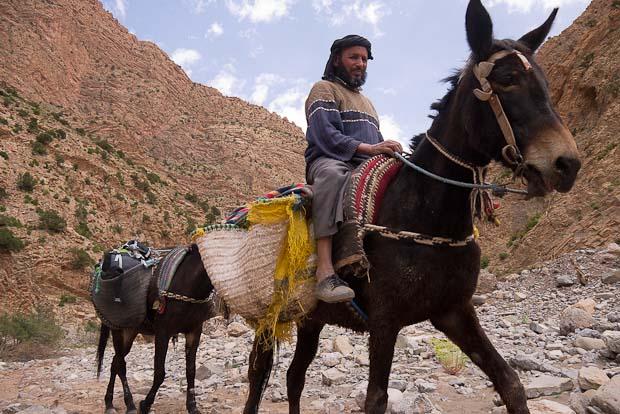 Mohamed (uno de tantos que había en el grupo)  susurraba en lengua bereber a su mula durante todo el camino.