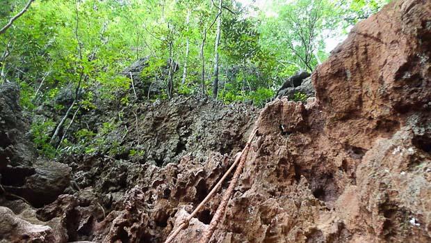 Para subir es imprescindible ayudarse de las cuerdas y tener cuidado con las raíces y rocas.