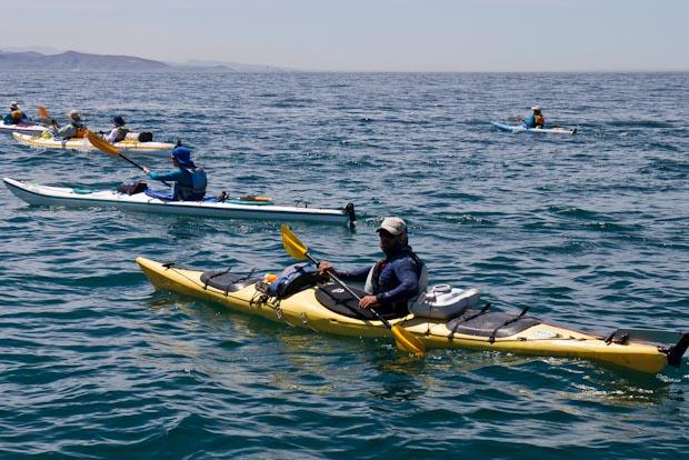 Grupo de kayak de personas de varios países que hacían la ruta de 7 días.
