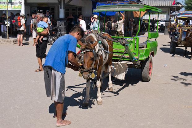 El carro tirado a caballo es también muy utilizado en Lombok y el único vehículo autorizado en las islas Gili.