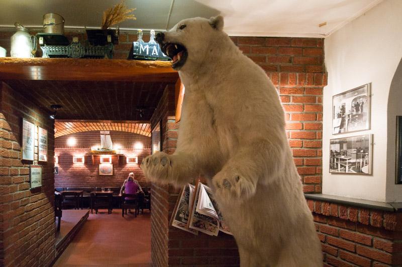 El oso polar disecado que no falte en un pub... Este sin uñas en las garras porque la gente se las lleva de recuerdo y la propiedad ya se ha cansado de reponerlas.