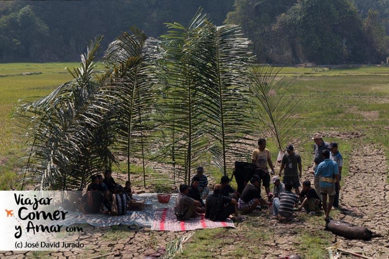 El trabajo en Tanta Toraja al sol, aunque sean las 10 de la mañana, precisa de protección.