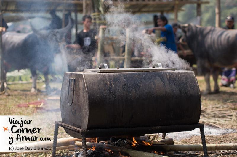 Cociendo el cerdo para luego preparar los platos tradiconales.