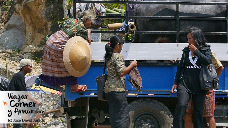 Invitados a un funeral. El camión es la forma más sencilla de trasladar a la familia entera y a las ofrendas (búfalos y cerdos)