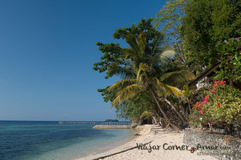 ID-Sulawesi-Togean-Islands-Kedidiri-P1320837-Viajar-Comer-Y-Amar