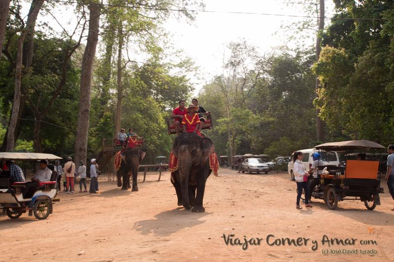 Templos-Angkor-KH-P1420332-Viajar-Comer-Y-Amar