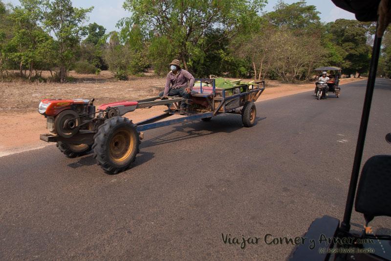 Mula mecánica usada en los arrozales en época de lluvias, en la carretera en época seca.