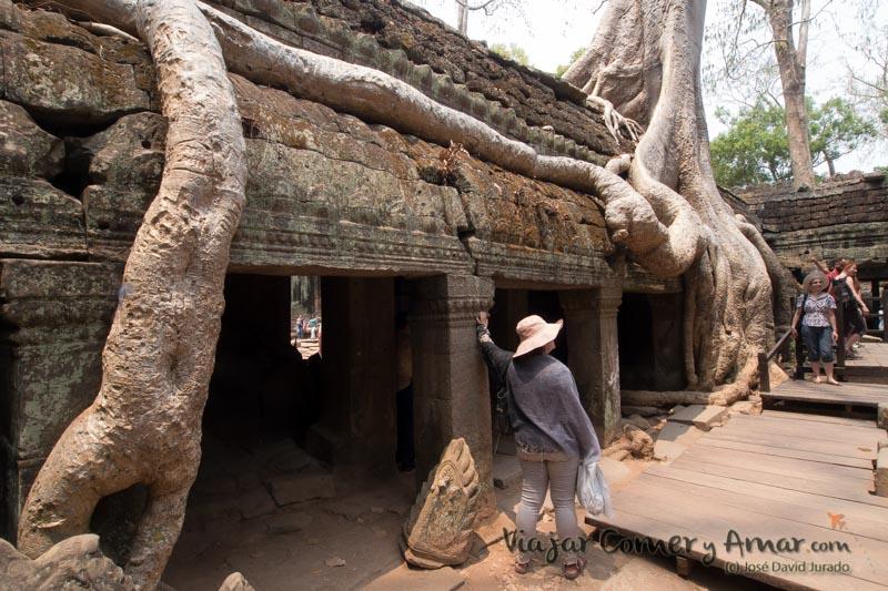 Ta Prohm, el templo devorado por la selva.
