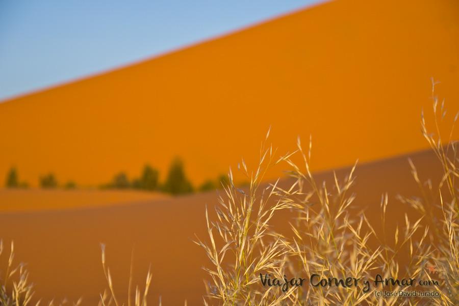 Desierto-Merzouga-Marruecos-P1060705-Viajar-Comer-Y-Amar