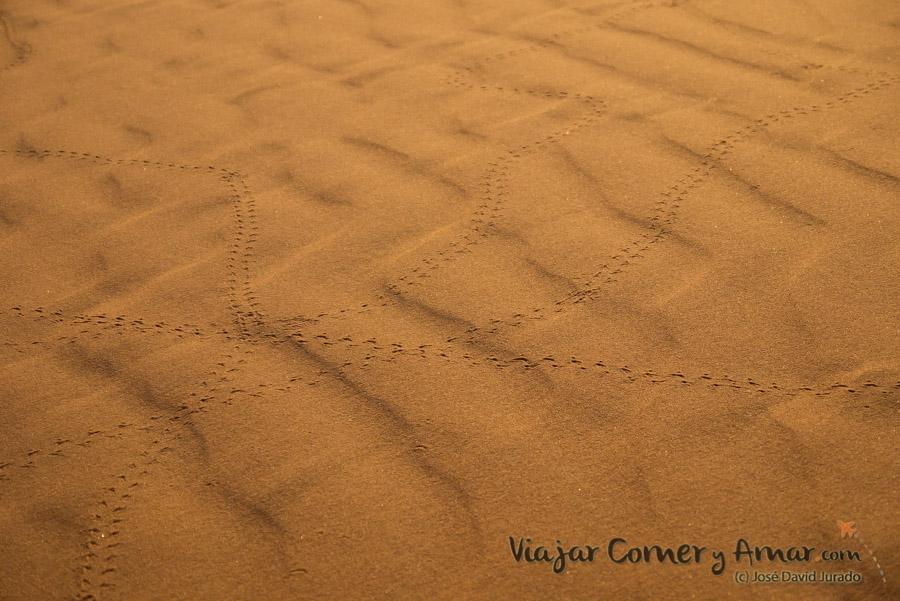 Desierto-Merzouga-Marruecos-P1060715-Viajar-Comer-Y-Amar