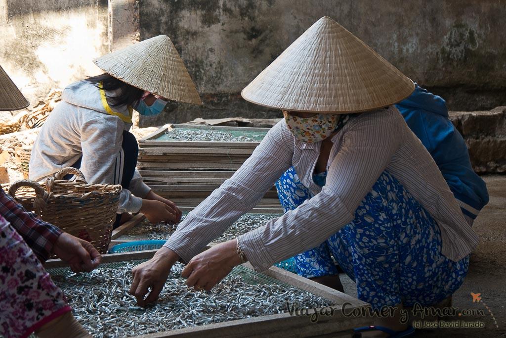 Mui-Ne-Vietnam-VN-P1450536-Viajar-Comer-Y-Amar
