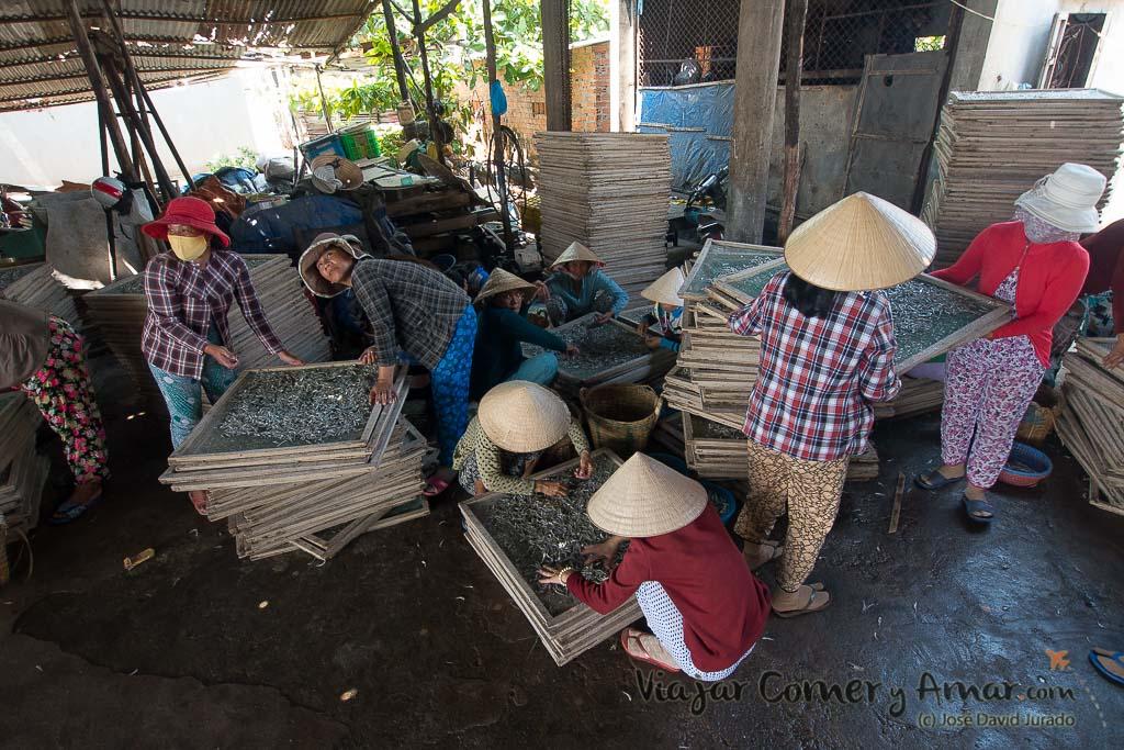 Mui-Ne-Vietnam-VN-P1450541-Viajar-Comer-Y-Amar