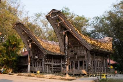Tana-Toraja-Sulawesi-Indonesia-1320328-Viajar-Comer-Y-Amar