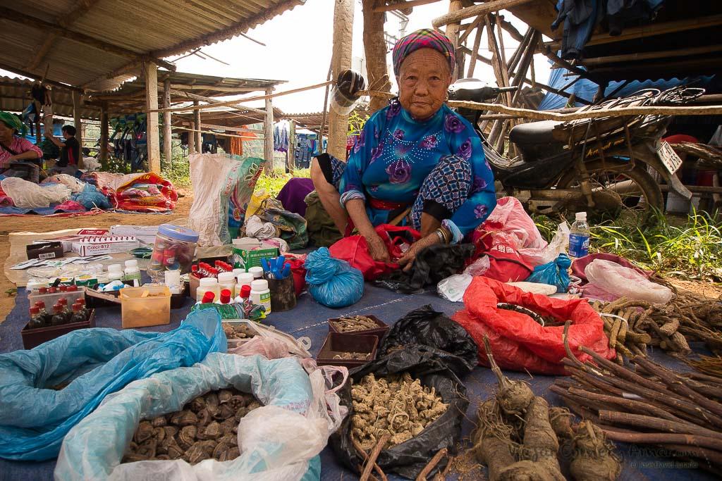 Bac-Ha-Coc-Ly-Sapa-Vietnam