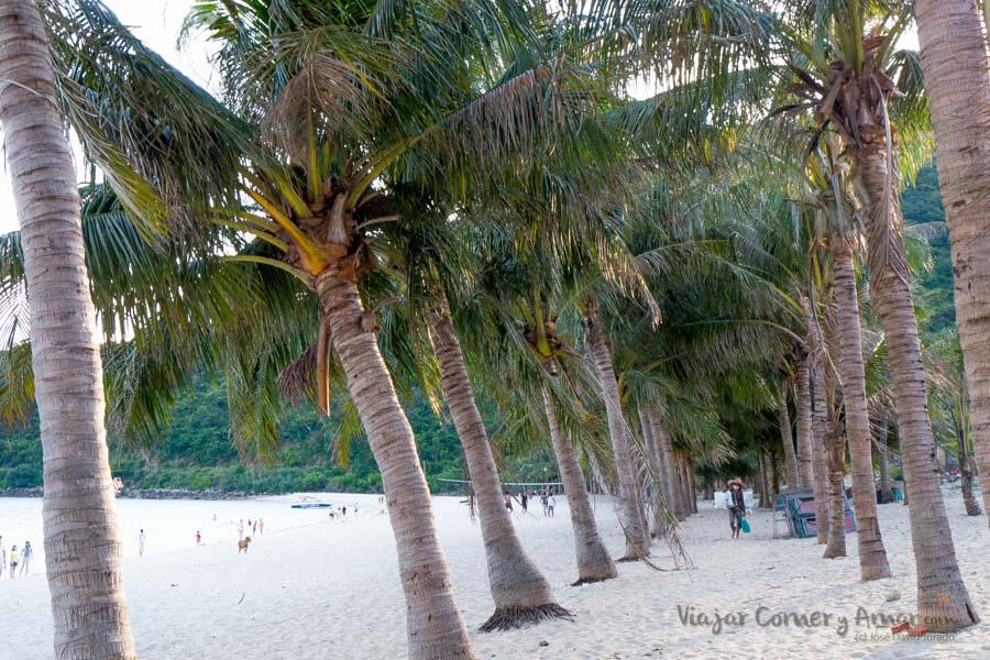 Cu-Lao-Cham-Vietnam-VN-P1460702-Viajar-Comer-Y-Amar