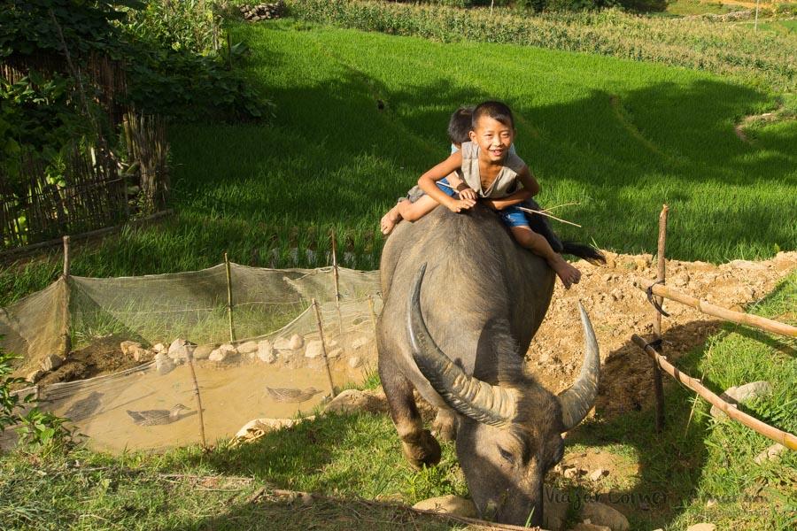 Sapa-Vietnam-sin título-P1490031-Viajar-Comer-Y-Amar